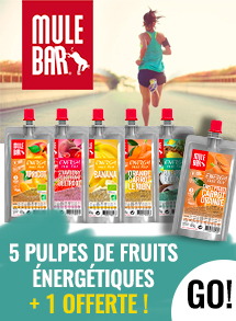Mulebar pulpes de fruit
