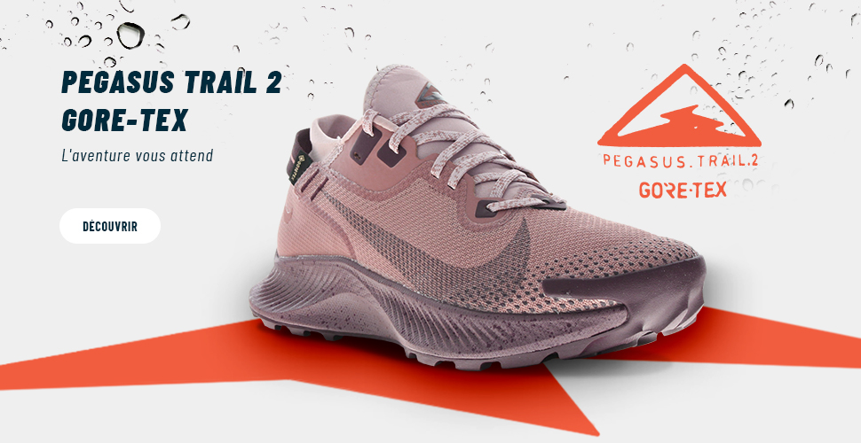 Nike Pegasus Trail 2 GTX