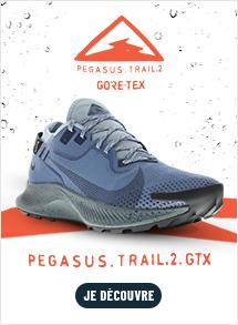 Nike pegasus Trail 2 GTX H