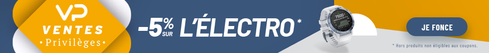 VP ventes privilèges electro