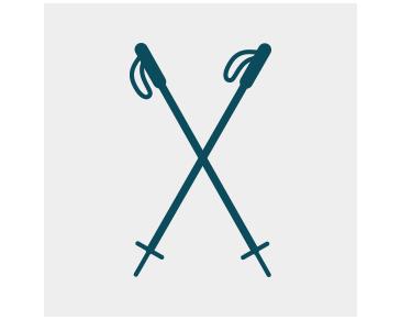 commander des bâtons de marche